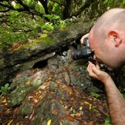 Scuba-Azores-Birdwatching-Cagaro-with-photographer